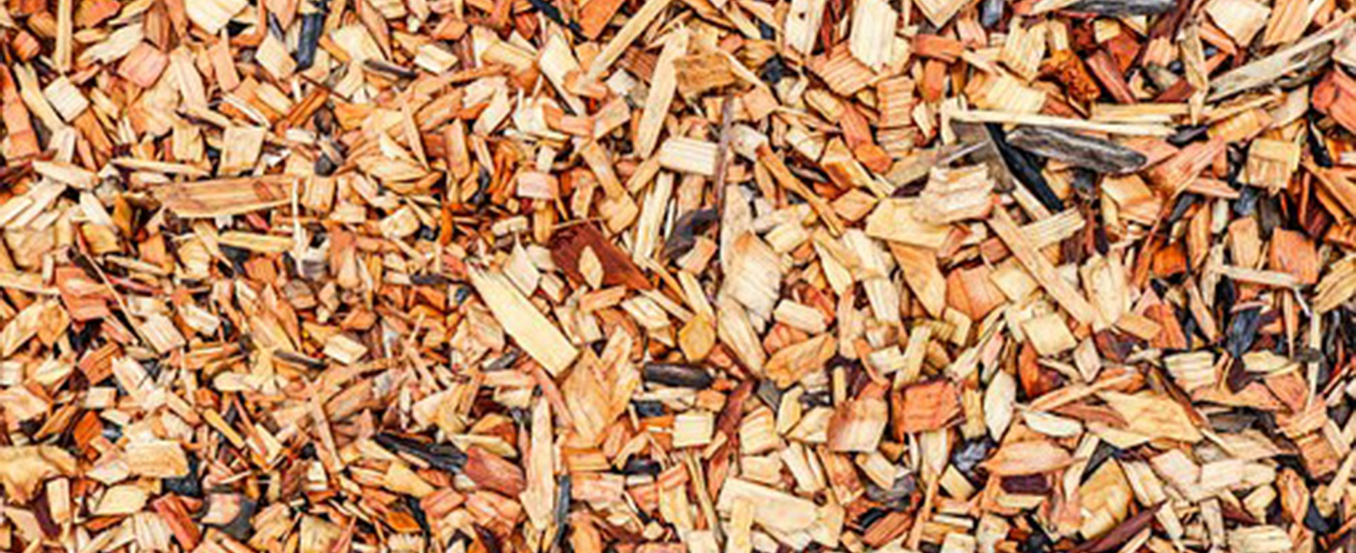 Bark chips spread out level on the soil to act as a mulch.