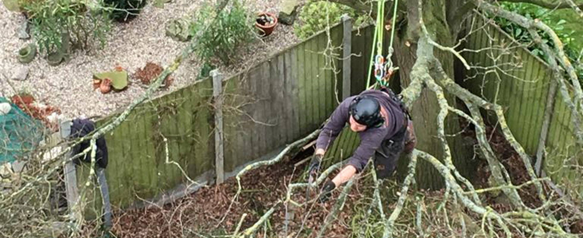 Andrew of Andrew's Arboriculture pruning a tree using a rope and pulley system, this means the job is done safely.